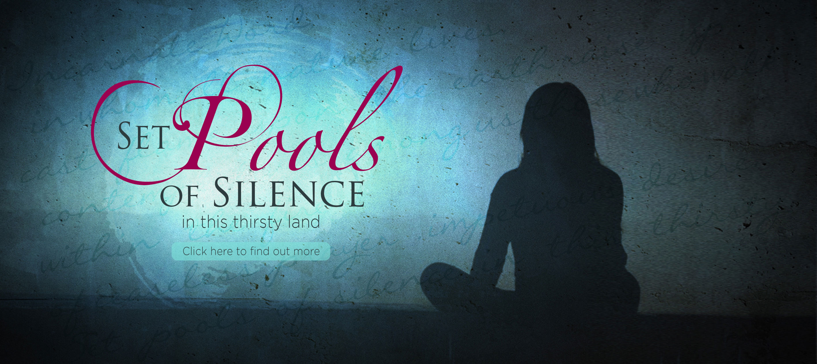 Advertisement for the Set Pools of Silence DVD